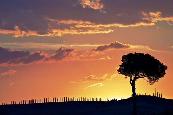 Bruidsfotografie Abdei van San Galgano – Siena – Italië