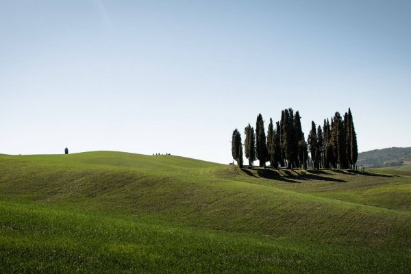 Bruidsfotografie Castello il Palagio – Toscane – Italië