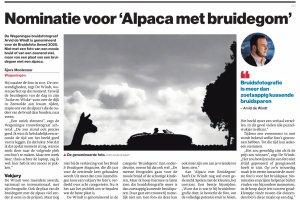 Alpaca met Bruidegom genomineerd voor de Bruidsfoto Award 2020
